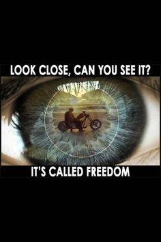 """""""Acercate mas, si lo ves? Se llama Libertad."""" ✌️    #Freedom #Libertad #BikerLife #VidaBiker #DisturbedCulture #DisturbedTendencies"""