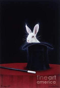 """the magic hat"" | will bullas"