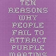 Ten Reasons Why People Fail to Attract Purple Martins