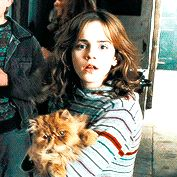 teenievel: Hermione in every movie You know the...