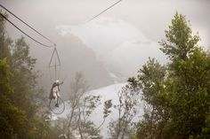 NoFit State performer Marco cycling a Penny Farthing on England's longest zip wire at the Eden Project.