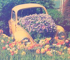 sommar | Tumblr