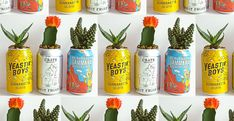 A crazy-cute way to upcycle your empty drink can - Expert Home Tips