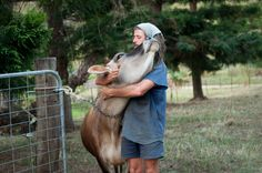 A day in the life of Tom Kendall: a cuddle with Toffee. Sunshine Coast, The Life, Permaculture, Livestock, Cuddling, Kendall, Toms, Horses, Toffee