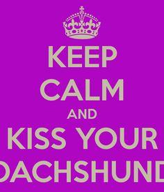 KEEP CALM AND KISS YOUR DACHSHUND