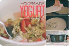 Diy Projects: How to Make Homemade Yogurt