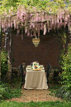 Wisteria draped dining.  Meet me for tea at noon in the cottage garden.