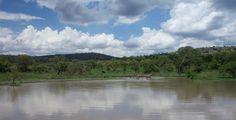 akagera park in Rwanda