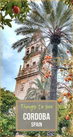 Among the most important landmarks of #CordobaSpain is by far the so-called La Mezquita. This Moorish legacy building serves as a reminder of the golden period of Andalusia. #Travel #TravelSpain #TravelAndalusia #TravelCordoba #CordobaThingsToSee