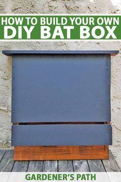 Building a bat box i
