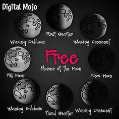 """LOVING this free """"phases of the moon"""" clip art set. Math Clipart, Science Clipart, Digital Paper Freebie, Third Grade Science, Elementary Science, Fall Clip Art, Waxing Gibbous, Science Words, Black And White Lines"""