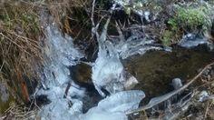 Il ghiaccio non necessita maestri. Crea l'arte da solo _ foto: Carlotta Mantovani