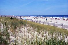 The Beach in Stone Harbor New Jersey