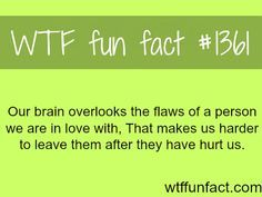how our brain works ? - love / relationships MORE OF WTF FUN facts are coming HERE relationships and fun facts