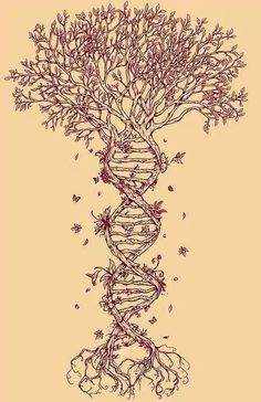 This as a skeleton tree as a tattoo
