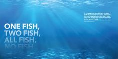 One Fish, Two Fish, All Fish, No #Fish - The problems of overfishing and habitat destruction remain very real threats to the survival of global marine resources.