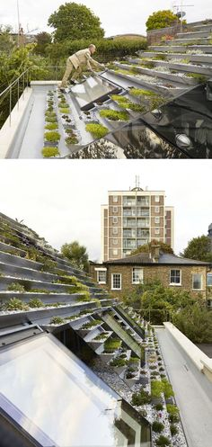 This green roof on a home in London, has a series of terraced stainless steel…