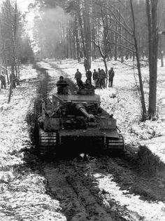 """Tiger, 2nd SS Pz Div """"Das Reich"""", Kirovograd, Ukraine"""