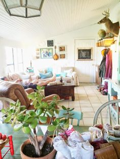 A beautiful home:: Essie Lane Farm: Seasons of Change and Blessings (in disguise)