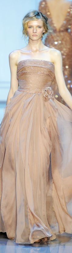 Elie Saab ~ Couture Strapless Sequin Chiffon Gown, Winter 2012