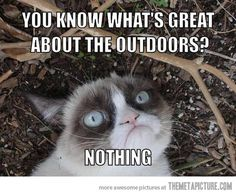 Grumpy Cat hates Nature.