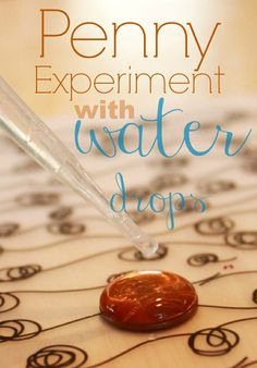 A penny experiment that demonstrates how water tension works and water can hold together in a dome shape :: a super simple science experiment for kids!