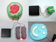 Make play-dough creatures with light up eyes - Squishy Circuits