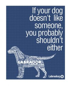 i love how it says labrador. by far the best dogs❤️ I Love Dogs, Puppy Love, Mans Best Friend, Best Friends, Dog Quotes, Labrador Quotes, Labrador Dogs, Labrador Retrievers, Liking Someone