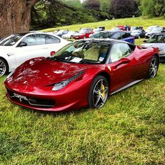 Ferrari 430 parked up on the grass.
