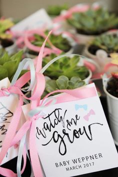 Watch me Grow Party Favors/Simple Nature Decor
