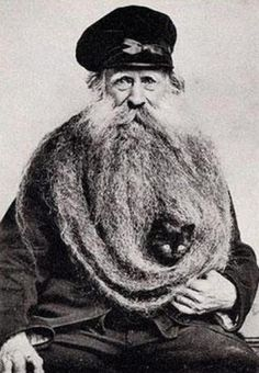 Is that a cat in his beard?