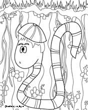 Worm Worksheet Coloring For A Lap Book And Handwriting