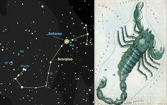 "Scorpius. On the left the stars in the modern constellation. On the right is the depiction in the 19th century work ""Urania's Mirror"". (Credit: Ian Ridpath) The claws, so prominent in the drawing, were lost to form Libra in Roman times."
