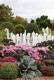 This weekend, we took our visiting guests to the Chicago Botanic Gardens. While the wind was nippy and the temperature definitely fall like...