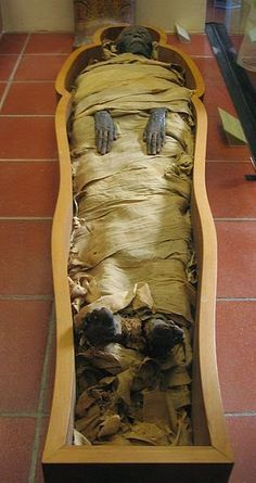 Egyptian Mummification Started 1500 Years Earlier Than Thought Researchers from the Universities of York, Macquarie and Oxford have discovered new evidence to suggest that the origins of mummification started in ancient Egypt 1,500 years earlier than previously thought.