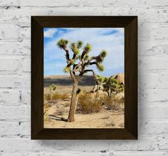 desert print, desert wall art, joshua tree national park, desert photo, nature prints, desert photography, landscape print, digital download di AlemiPrints su Etsy