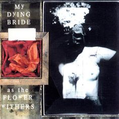 My Dying Bride, As the Flower Withers, 1992   Recensione Canzone per Canzone, Review Track by Track. #Rock & Metal In My Blood