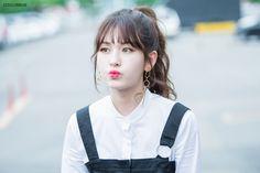 #소미 #Somi