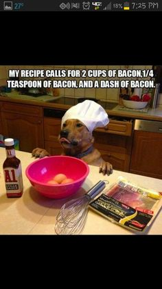 Don't ever let your dog cook. ROFL.