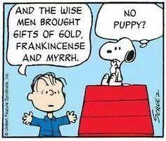 No puppy?