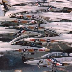F-14A Wolfpack