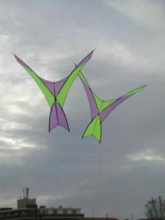 These graceful flying creations are obviously designed as a pair, with colors swapped. I'm calling them Bird kites, albeit very stylized! T.P. (my-best-kite.com)