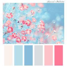 Alyssas Pallette Blue Grey Pink