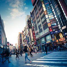 Tokyo street ( Japan)