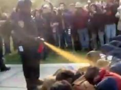 """UC Davis """"Pepper Spray Cop"""" Seeks Worker's Comp for Psychiatric Injury -       The infamous campus cop, John Pike, claims to have suffered psychiatric injuries from his pepper-spraying of peaceful protesters.     WTF?!  REWARD """"law enforcement"""" scum like this guy? People who abuse POWER should be given PRISON sentences much STIFFER because they harm ALL of society!    http://www.alternet.org/civil-liberties/uc-davis-pepper-spray-cop-seeks-workers-comp-psychiatric-injury"""