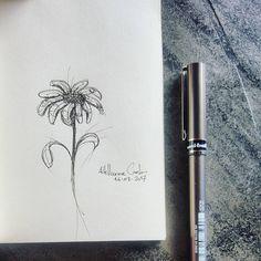 """100 curtidas, 4 comentários - Autoria: @altillierme_carlo (@desenhos_do_alti) no Instagram: """"Flower Lines  #desenhosdoalti #desenhos #sketch #sketchers #sketchbook #art #artlovers #artbrazil…"""""""