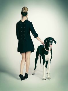 can we all start walking around high fashion style with horse dogs please?