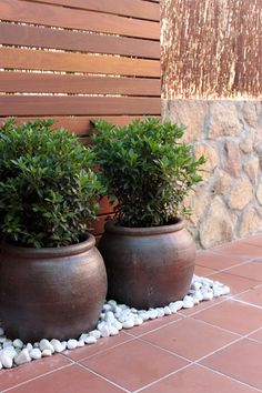 jardin en vivienda, detalle en acceso