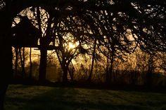 A l'approche des beaux jours quoi de plus romantique qu'un magnifique levé de soleil perché dans les arbres!