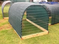 gamefowl pen - this design might make an easy chicken run tho.